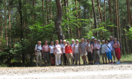 Samstagswanderung des TV Bischofsheim bei sommerlicher Hitze