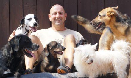 """<span class=""""entry-title-primary"""">Die beste Wahl für die Hundebetreuung</span> <span class=""""entry-subtitle"""">Die Hundepension SOZIDOGS verzichtet komplett auf Zwingerhaltung</span>"""