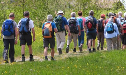 Wanderung des Alpenvereins im Odenwald