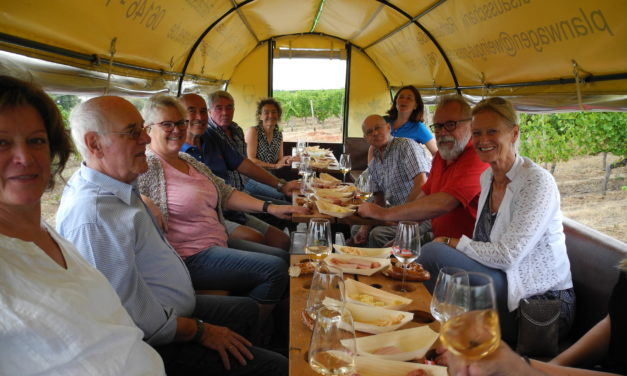 Hochheimer Flüchtlingshelfer im Planwagen durch die Weinberge