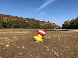 Impressionen vom Rhein bei Nackenheim