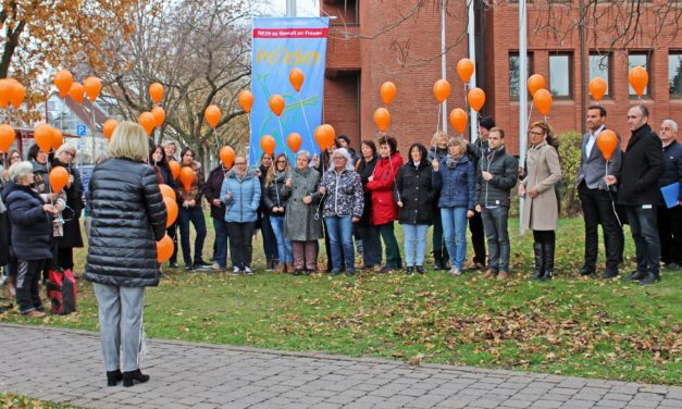 """<span class=""""entry-title-primary"""">Nein zu Gewalt an Frauen</span> <span class=""""entry-subtitle"""">Fahnenhiss-Aktion vor dem Landratsamt zum Internationalen Tag gegen Gewalt an Frauen</span>"""