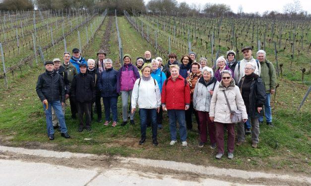 Die Wanderer des Turnvereins Bischofsheim trotzten Wind und Wetter