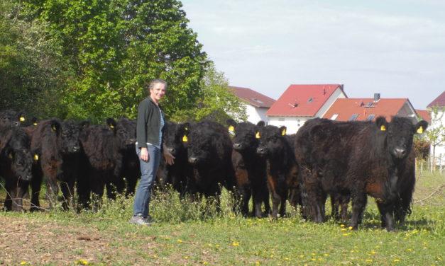 """<span class=""""entry-title-primary"""">Wo die Welt noch in Ordnung ist</span> <span class=""""entry-subtitle"""">Röderhof und Röderhofladen in Trebur praktizieren nachhaltige Landwirtschaft</span>"""