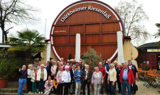 """""""Mir Haßlischer"""" in Bad Dürkheim"""