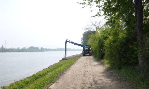 """<span class=""""entry-title-primary"""">Radweg  zwischen Laubenheim und Bodenheim wird umgeleitet!</span> <span class=""""entry-subtitle"""">Umfangreiche Bauarbeiten zur Ufer- und Auenrenaturierung dauern bis zum Herbst an</span>"""