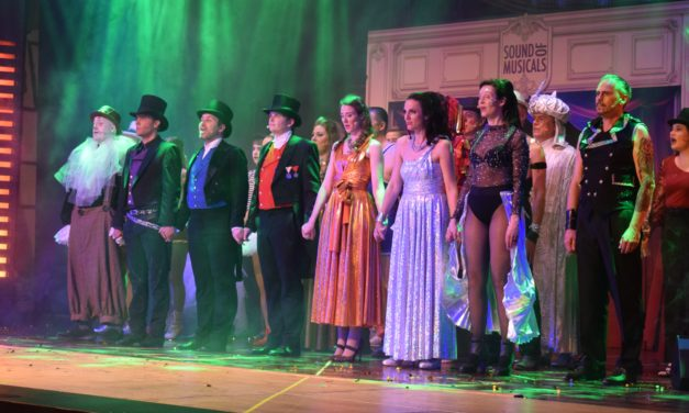 "<span class=""entry-title-primary"">Musical-Fans zog es nach Bischofsheim</span> <span class=""entry-subtitle"">Sound of Musicals begeisterte mit Grease, Aladdin, Rebecca, Jekyll and Hyde und The greatest Showman</span>"