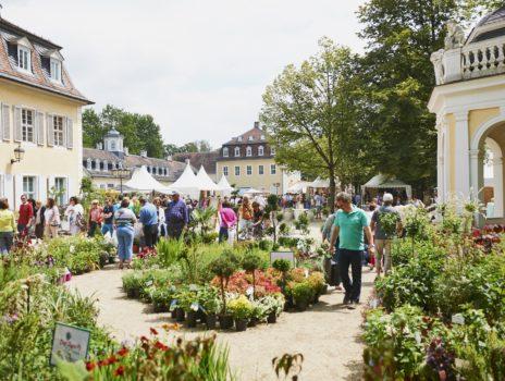 Zu gewinnen: Eintrittskarten für das Gartenfest Hanau