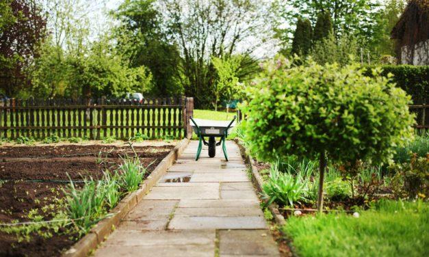 Lebensraum Kleingarten: Ökologie und Erholung im Einklang mit Gemüse- und Obsterzeugung