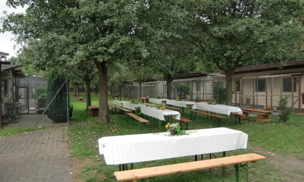 LandFrauencafe im Grünen