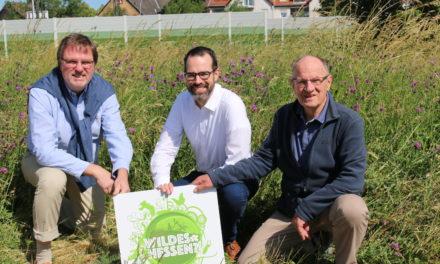 Rüsselsheim fördert Artenvielfalt mitten in der Stadt