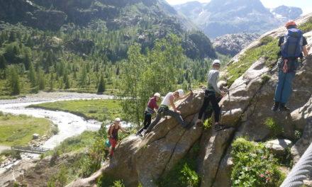 Steinböcke und Gletscherseen