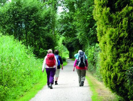 Spaziergänge und Wanderungen