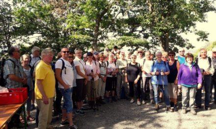 Federweißen-Wanderung erfreut sich internationaler Teilnahme