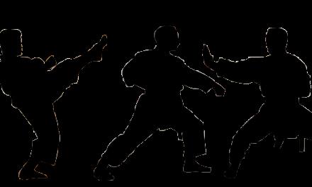 """<span class=""""entry-title-primary"""">TSV Ginsheim – Karate</span> <span class=""""entry-subtitle"""">Der RheinMain Karatecup startet in die fünfte Auflage</span>"""