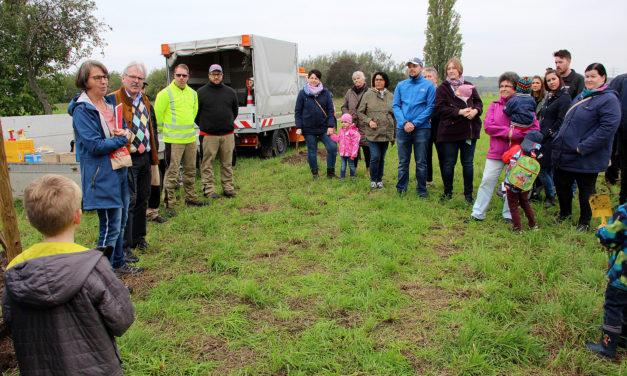Erste Pflanzung auf der neuen Kinderstreuobstwiese in Wicker