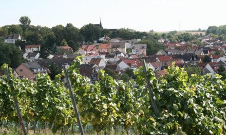 """<span class=""""entry-title-primary"""">Hechtsheim, Rheinhessen und die Great Wine Capitals</span> <span class=""""entry-subtitle"""">Einladung zum Vortrag über Weinbau im Mainzer Stadtteil und dem Umland</span>"""