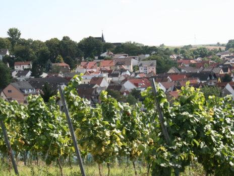 Hechtsheim, Rheinhessen und die Great Wine Capitals