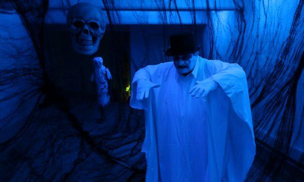 """<span class=""""entry-title-primary"""">Halloween im Kellerlabyrinth</span> <span class=""""entry-subtitle"""">Gepflegtes Gruseln für Groß und Klein</span>"""