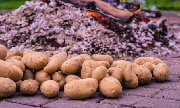 Kartoffelfeuer für Kinder und Eltern