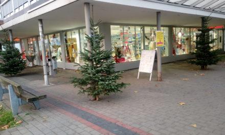 Einkaufszentren werden mit Weihnachtsbäumen geschmückt