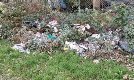 Kolpingsfamilie sammelt drei Säcke Abfall
