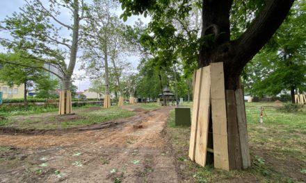 Bauarbeiten im Hummelpark gestartet