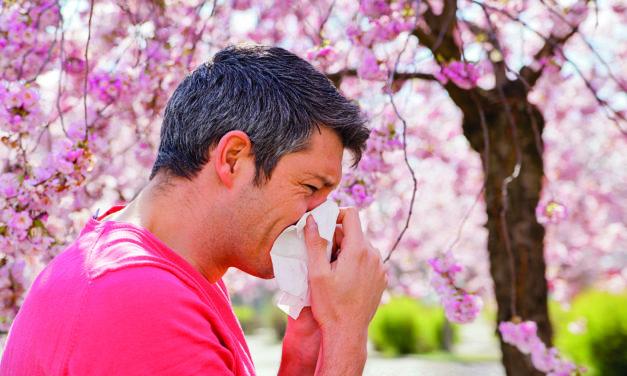 "<span class=""entry-title-primary"">Pollen, Hausstaub, Schimmel</span> <span class=""entry-subtitle"">Tipps für Allergiker</span>"