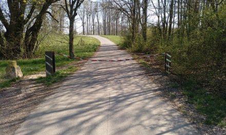 Zufahrt Dienheimer Rheindamm wieder mit Kette gesperrt