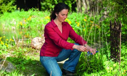 Tipps für den Start in die Gartensaison