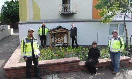 Vor dem Rathaus steht jetzt ein Bienenhotel