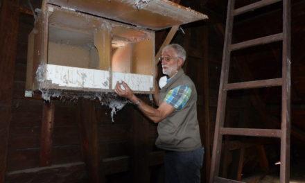 Okriftel: Weder Turmfalken noch Schleiereulen in der evangelischen Kirche