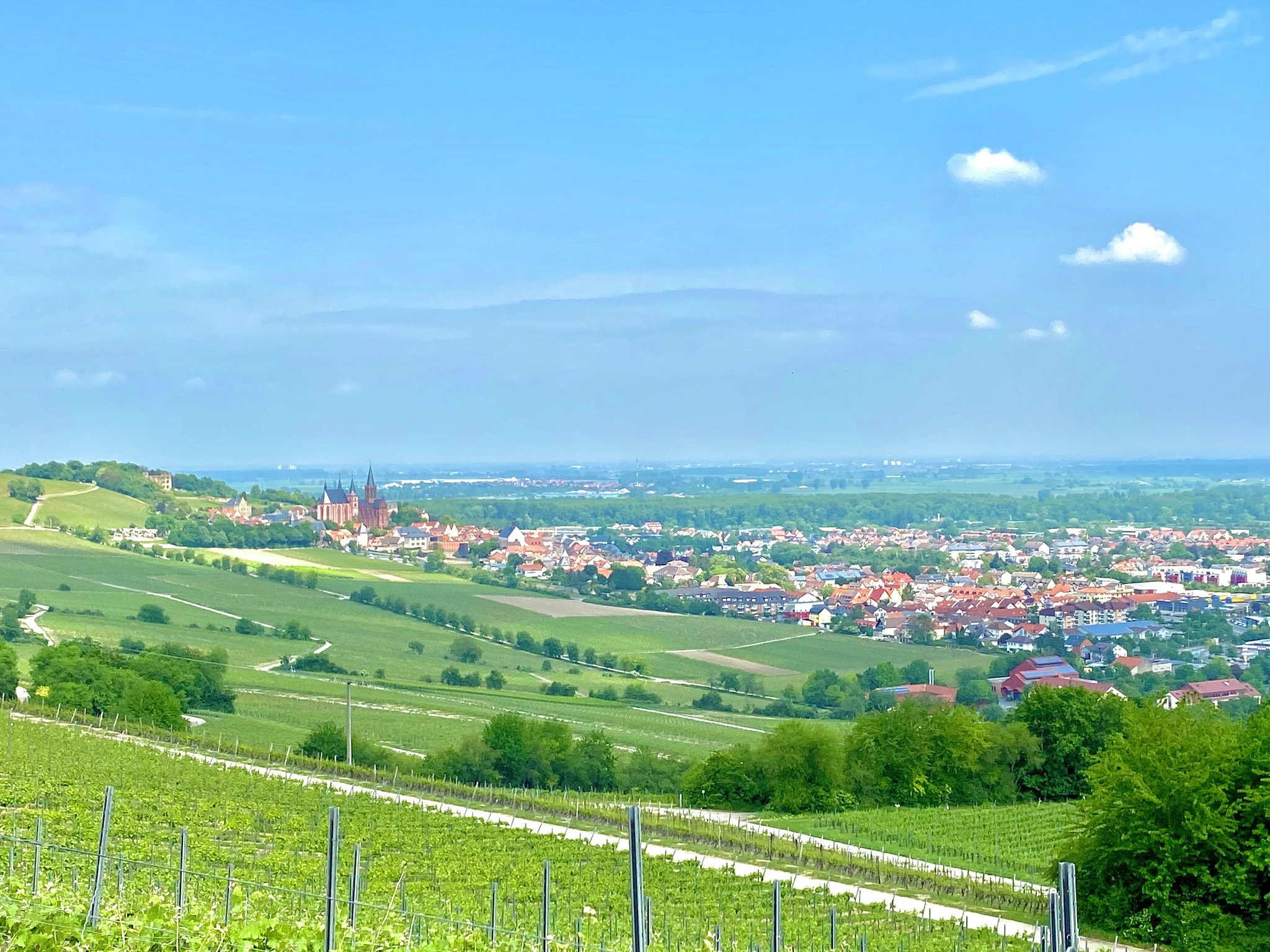 Panoramatour Reben und Kirche