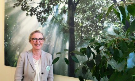"""<span class=""""entry-title-primary"""">Weingartenschule Kriftel (WGS)</span> <span class=""""entry-subtitle"""">Mit Herz und Leidenschaft: Elke Wetterau-Bein zur neuen Direktorin ernannt</span>"""