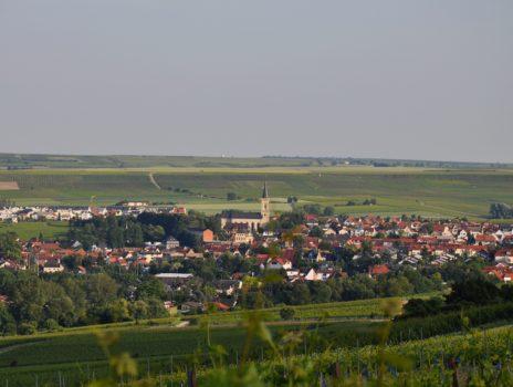 Das Tor zur Rheinterrasse