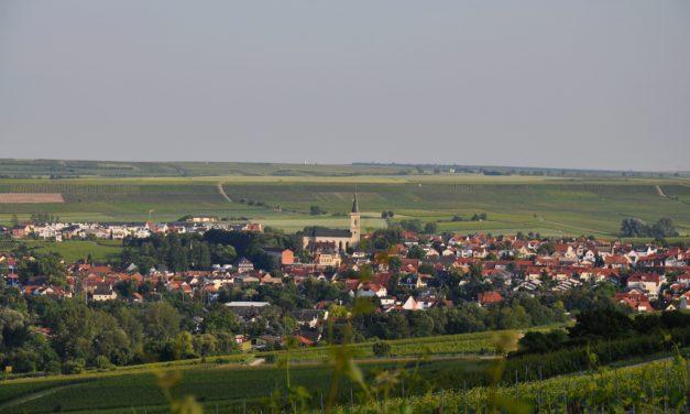 """<span class=""""entry-title-primary"""">Das Tor zur Rheinterrasse</span> <span class=""""entry-subtitle"""">Bodenheim – ein Ort vom Wein geprägt </span>"""