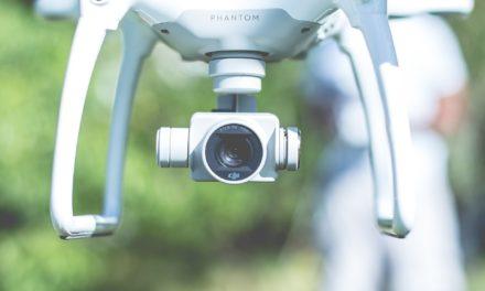 Baumkontrolle mit Drohne