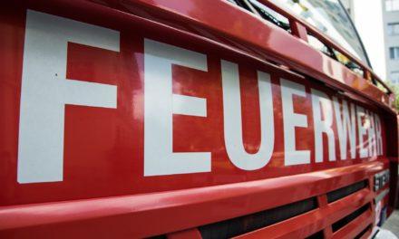 """<span class=""""entry-title-primary"""">Brand in Auto- und Lackierwerkstatt</span> <span class=""""entry-subtitle"""">98. Einsatz für die Freiwillige Feuerwehr Ginsheim-Gustavsburg</span>"""