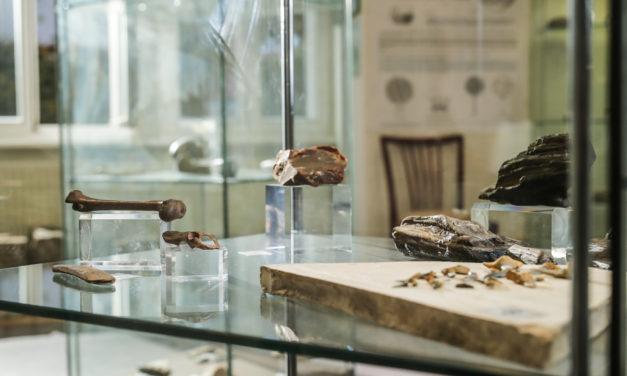 Das Otto-Schwabe-Heimatmuseum öffnet wieder