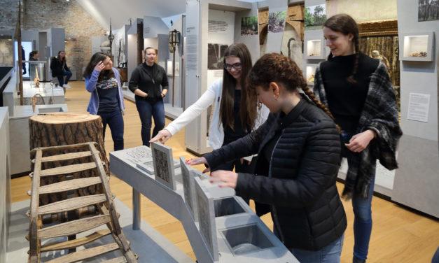 Kurzführung: Rüsselsheim – alles, was man wissen muss