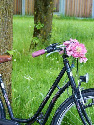Rüsselsheim am Main radelt zum 12. Mal für ein gutes Klima