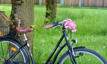 Fahrrad-Codierung am 17. September in Flörsheim