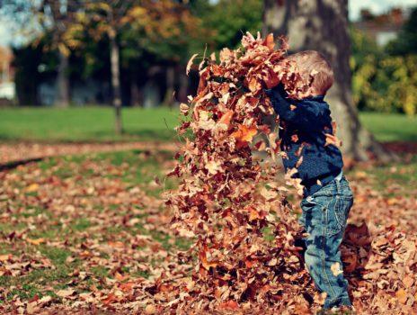 Herbst-Ferienspiele finden statt