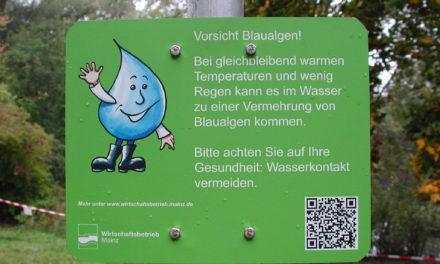 """<span class=""""entry-title-primary"""">Blaualgenpopulation gesunken</span> <span class=""""entry-subtitle"""">Regenrückhaltebecken in Hechtsheim wieder zugänglich / Neue Hinweisschilder mit QR-Code informieren Spaziergänger</span>"""