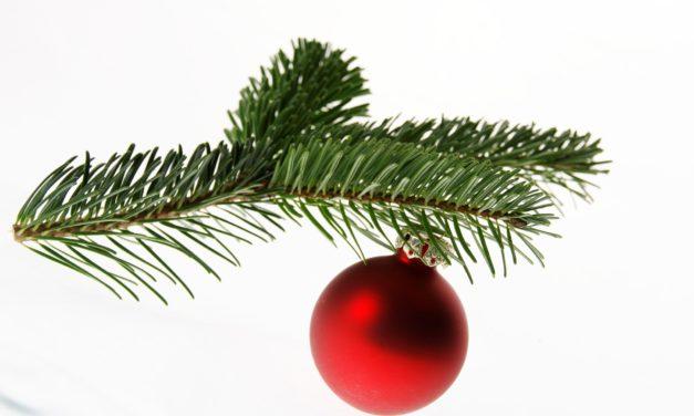 Weihnachtsbäume werden später abgeholt