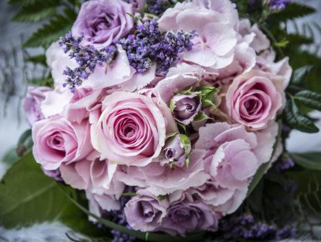 Floristik und Grabpflege in und um Bodenheim