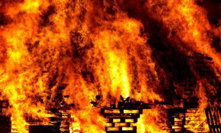 Gedenken: Drei Feuerwehrleute starben vor 50 Jahren bei Linde-Großbrand in Kostheim