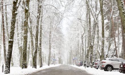 Müllabfuhr bei Schnee und Eisglätte