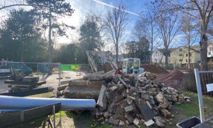 Sanierung des Laubenheimer Parks