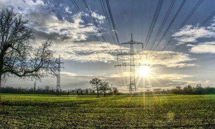 Nach Strommasterneuerung werden Wickerer Feldwege instandgesetzt